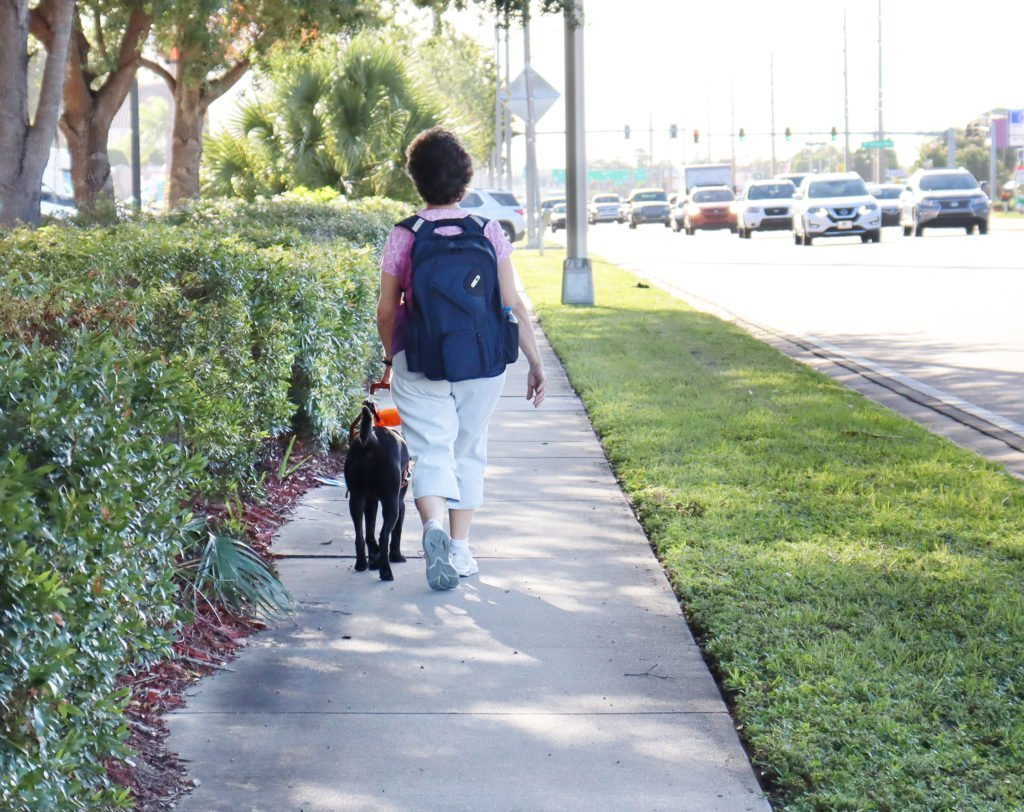 Middle aged women wearing a pink shirt, white capri pants and sneakers wearing a blue backpack walking down a street with her black guide dog
