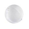 Lanyard 4x Magnifier Mobilent LED